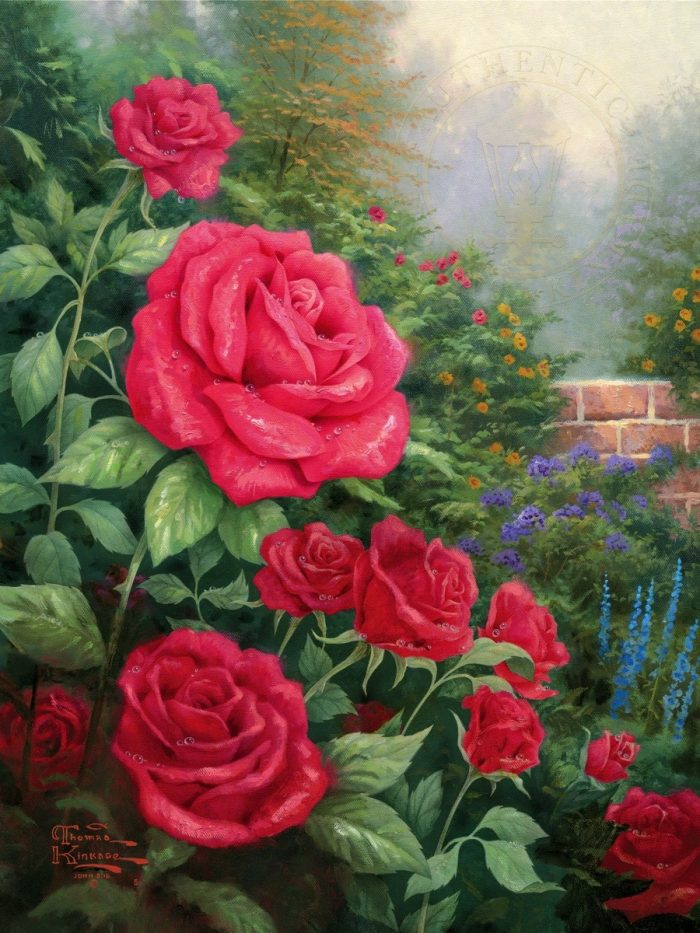 Perfect Red Rose, A – Limited Edition Canvas