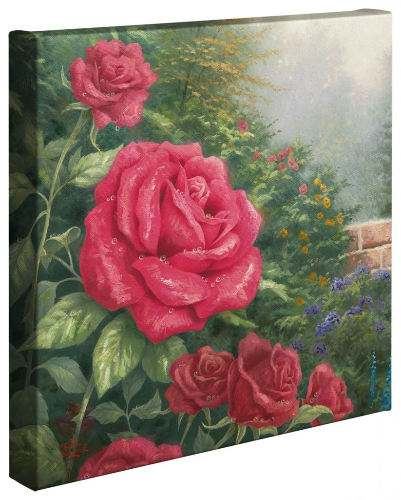 Perfect Red Rose, A – 14″ x 14″ Gallery Wrapped Canvas