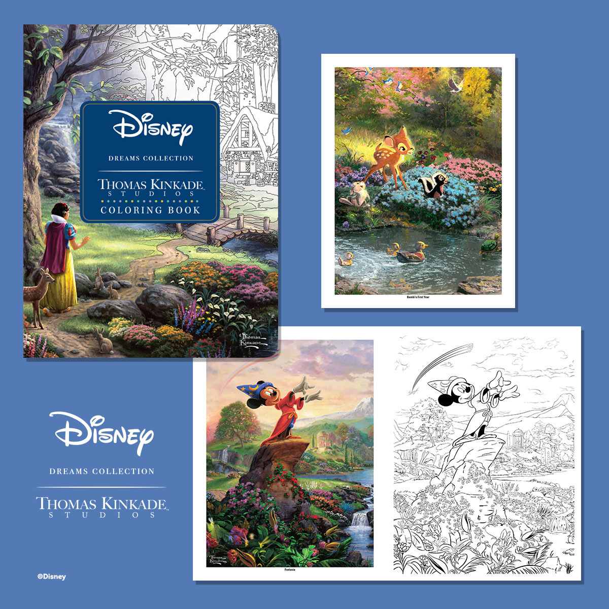 In This Unique Coloring Book Enjoy 63 Pages Of Thomas Kinkade Studios Disney Dreams Collection Paintings Celebrating The Timeless Moments Classic