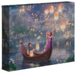 Tangled – 8″ x 10″ Gallery Wrapped Canvas